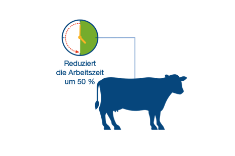 Infographics_Video_MilkingRotary_Bauernland_OK_DE.png