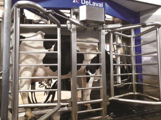 DeLaval VMS with Cow